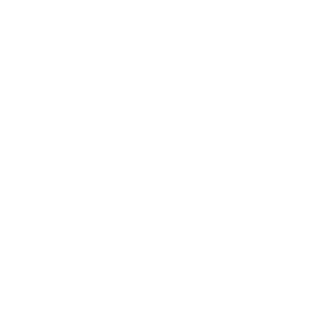 stichting normering arbeid
